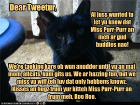 A Letter frum da over teh Rainbow Bridge to Tweetur
