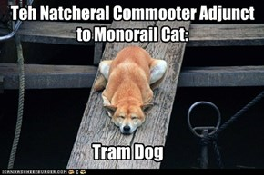 Teh Natcheral Commooter Adjunct to Monorail Cat: