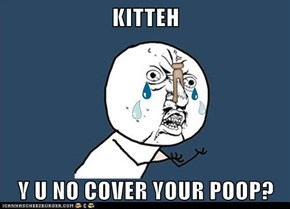KITTEH  Y U NO COVER YOUR POOP?