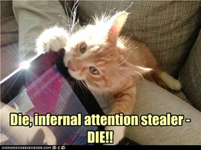 Die, infernal attention stealer - DIE!!