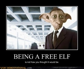 BEING A FREE ELF