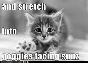 and stretch into goggies facing sunz