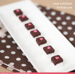 Epicute: Chocolate Dipped Sugar Cubes