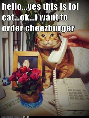 hello...yes this is lol cat...ok...i want to order cheezburger