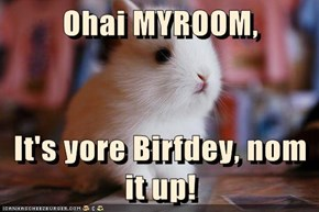 Ohai MYROOM,  It's yore Birfdey, nom it up!