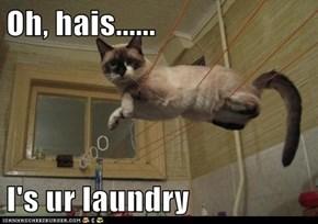 Oh, hais......  I's ur laundry