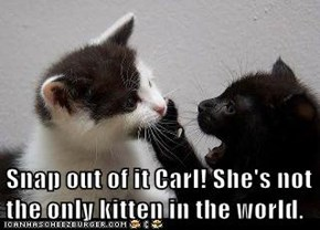 Snap out of it Carl! She's not the only kitten in the world.