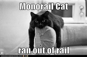 Monorail Cat   ran out of rail