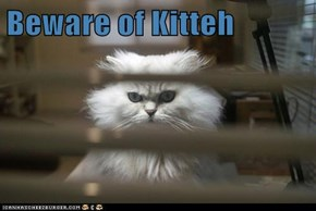 Beware of Kitteh