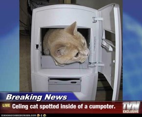 Breaking News - Celing cat spotted inside of a cumpoter.