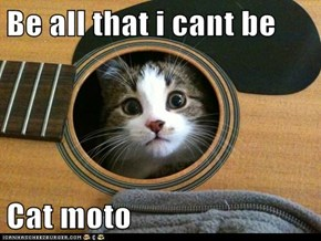 Be all that i cant be  Cat moto
