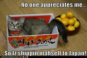 No one appreciates me...  So Iz shippin mahself to Japan!