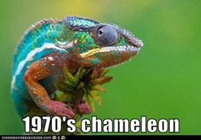 1970's chameleon