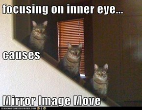 focusing on inner eye... causes Mirror Image Move
