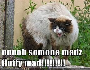 ooooh somone madz fluffy mad!!!!!!!!!
