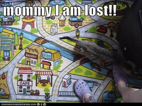 mommy I am lost!!