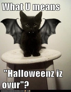 "What U means    ""Halloweenz iz ovur""?"