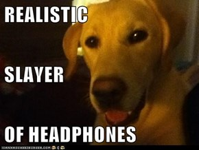 REALISTIC SLAYER  OF HEADPHONES