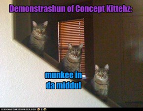 Demonstrashun of Concept Kittehz: