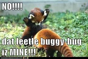 NO!!!!  dat leetle buggy-bug iz MINE!!!