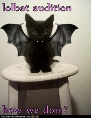 lolbat audition  how we doin?