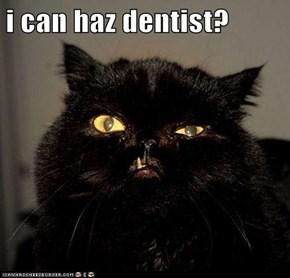 i can haz dentist?