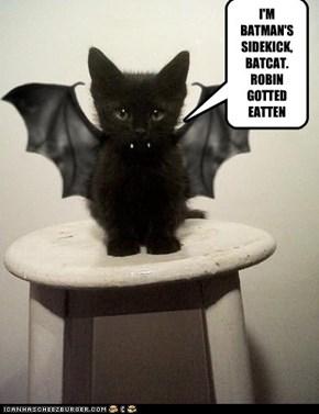I'M BATMAN'S SIDEKICK, BATCAT.ROBIN GOTTEDEATTEN