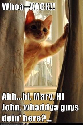 Whoa--AACK!!  Ahh...hi, Mary, Hi John, whaddya guys doin' here?...