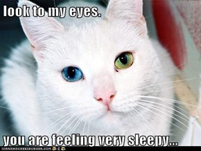 look to my eyes.  you are feeling very sleepy...