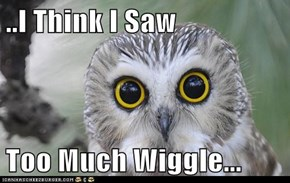 ..I Think I Saw  Too Much Wiggle...