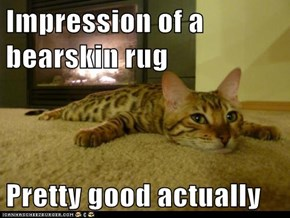 Impression of a bearskin rug  Pretty good actually