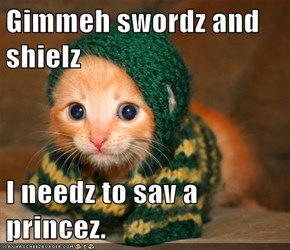 Gimmeh swordz and shielz  I needz to sav a princez.
