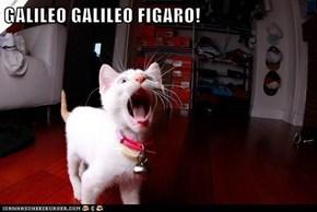 GALILEO GALILEO FIGARO!