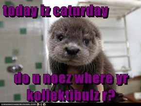 today iz caturday  do u noez where yr kollektibulz r?