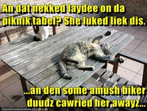 An dat nekked laydee on da piknik tabel? She luked liek dis.  ...an den some amush biker duudz cawried her awayz...