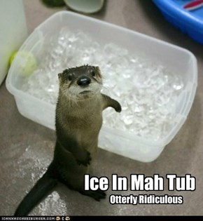 Ice In Mah Tub