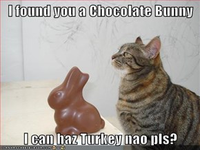 I found you a Chocolate Bunny  I can haz Turkey nao pls?