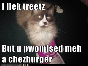 I liek treetz  But u pwomised meh a chezburger
