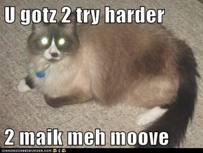 U gotz 2 try harder  2 maik meh moove