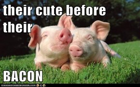 their cute before their  BACON