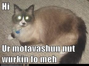 Hi  Ur motavashun nut wurkin fo meh