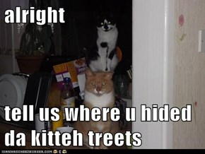 alright  tell us where u hided da kitteh treets