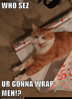 WHO SEZ  UR GONNA WRAP MEH!?
