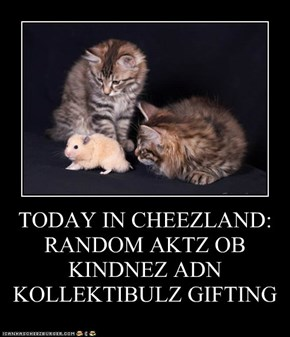 TODAY IN CHEEZLAND: RANDOM AKTZ OB KINDNEZ ADN KOLLEKTIBULZ GIFTING