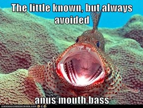 The little known, but always avoided  anus mouth bass