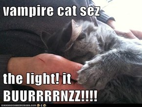vampire cat sez  the light! it BUURRRRNZZ!!!!
