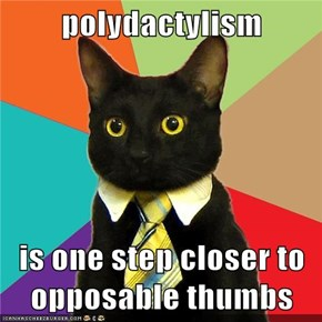 polydactylism  is one step closer to opposable thumbs