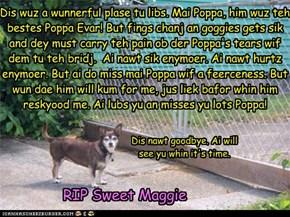 Sweet Maggie