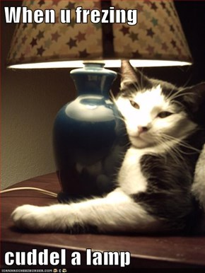 When u frezing  cuddel a lamp