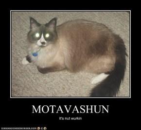 MOTAVASHUN